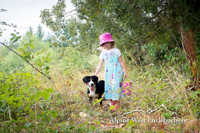 Entlebucher and children